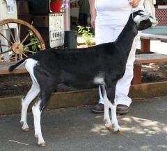 RITA ~ 2009